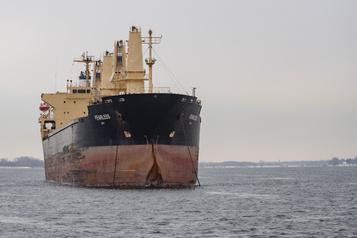 Transport maritime: encore de nouveaux frais, déplorent les armateurs)