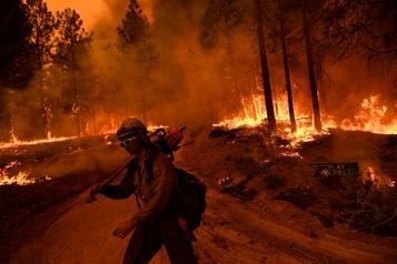 Californie Les pompiers combattent les incendies encerclant les séquoias géants)