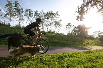 Cyclotourisme: jamais sans mon chien