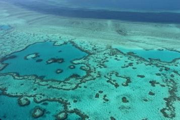 UNESCO La Grande Barrière de corail «en danger», l'Australie prête à contester)