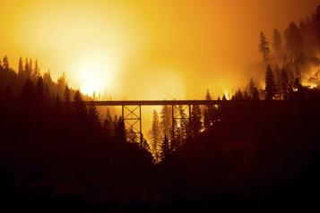 Étude montréalaise Les incendies de forêt prennent de l'altitude )
