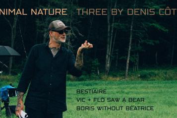 Trois films de Denis Côté sur Criterion Channel )