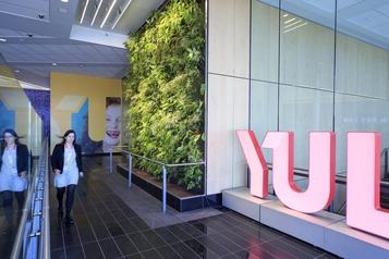Planète bleue, idées vertes: conjuguer écologie etéconomies avec les murs végétaux