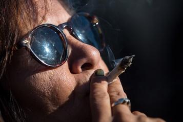 Le cannabis pourrait combattre le coronavirus)
