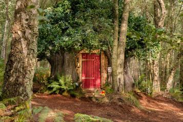 Une cabane inspirée de Winnie l'Ourson à louer sur Airbnb