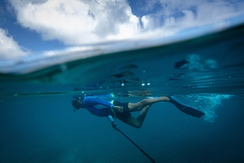 Seychelles: préserver un paradis du tourisme de masse