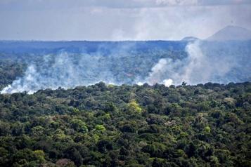Brésil La forêt amazonienne désormais émettrice nette de carbone)