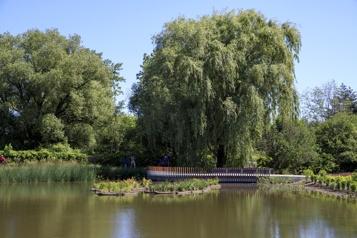 Milieu humide La solution du Jardin botanique aux indésirables)