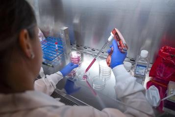 Santé Lutte contre la COVID-19: à la recherche de l'anticorps champion)