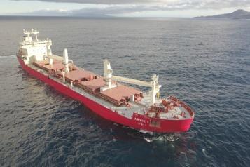 Transport maritime Une baleine boréale unique sur le Saint-Laurent