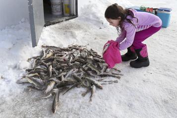 Dernier week-end pour la pêche au poulamon)