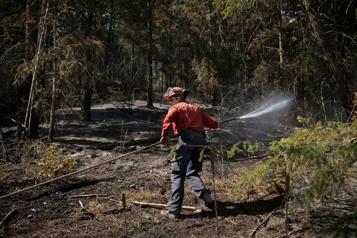 Colombie-Britannique Des militaires iront combattre les incendies de forêt)