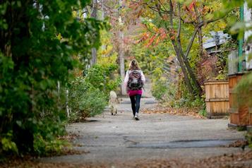 20 000 arbres seront plantés dans Rosemont d'ici 2025