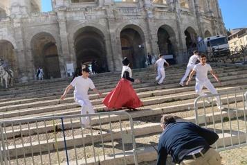 France Trois taureaux s'échappent en ville, blessent une joggeuse de 70ans)