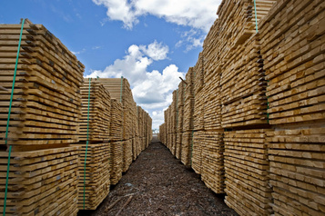 Le prix du bois d'œuvre nuit à BMR