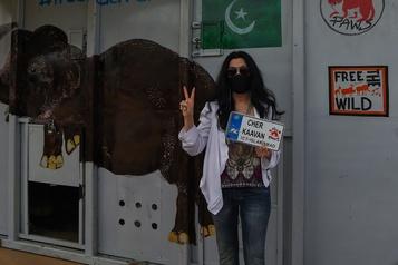 Cher accueille au Cambodge l'éléphant maltraité du Pakistan)