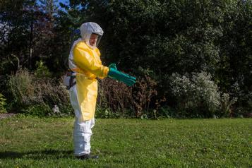 Pesticides : l'imprudence est dans le pré