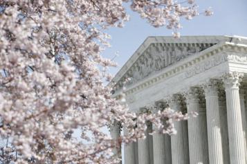Les cerisiers sont en fleurs à Washington )