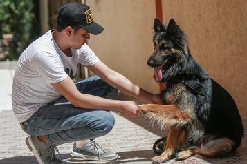 Le Hamas veut interdire l'espace public aux chiens)