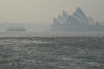 Australie: la fumée des incendies à l'origine de centaines de décès)
