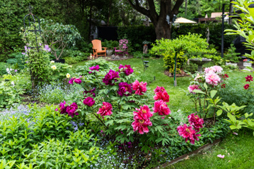 Bien dans son jardin S'entourer de fleurs de mai jusqu'à octobre)