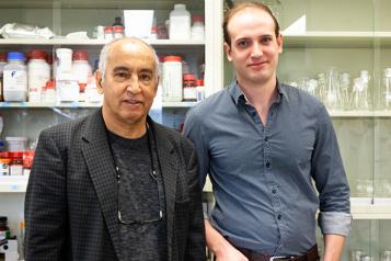 Sciences de la vie Biomatériaux: réparer les cartilages jusqu'en Australie