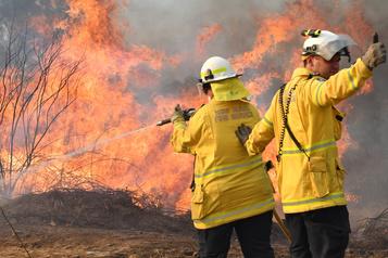 En Australie, un combat «herculéen» contre les incendies de forêt