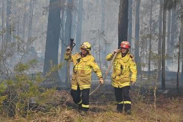 Incendies en Australie: Sydney se prépare à affronter une situation «catastrophique»