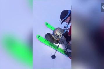 Un chat les accompagne à 3000 mètres d'altitude )