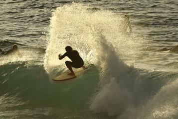Des centaines de surfeurs se ruent pour la réouverture de Bondi Beach)