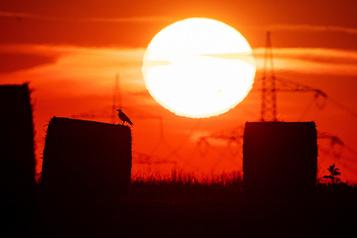 Juillet2019, mois le plus chaud jamais mesuré dans le monde