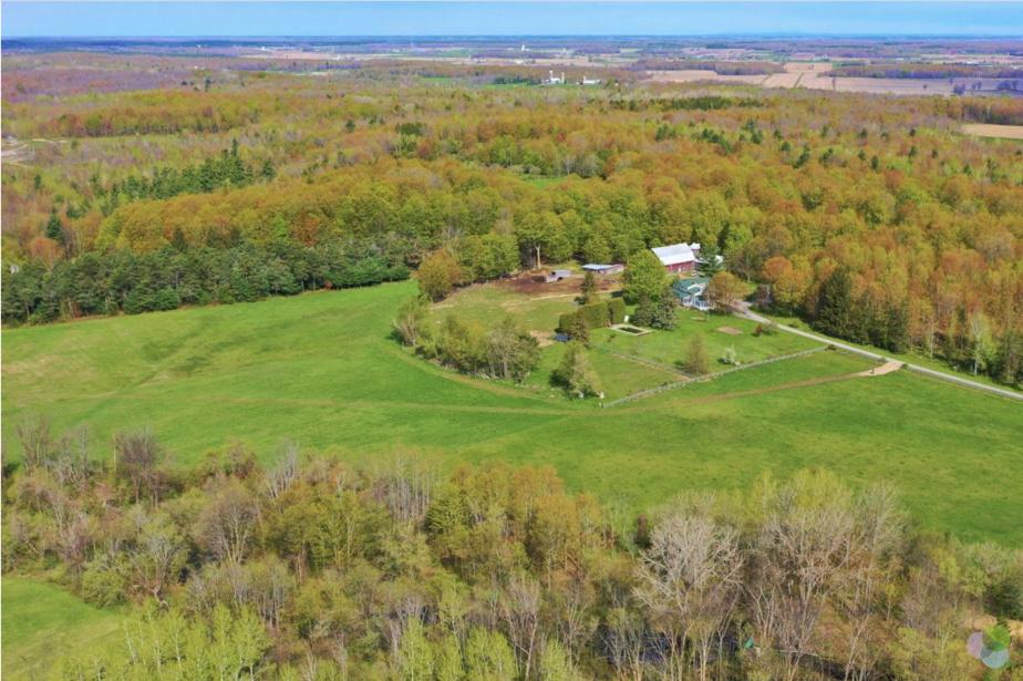 Une partie du terrain qui constitue la propriété. En tout, il y a 140acres de forêt, dont des terres cultivables (30acres), des étangs, une érablière, etc.