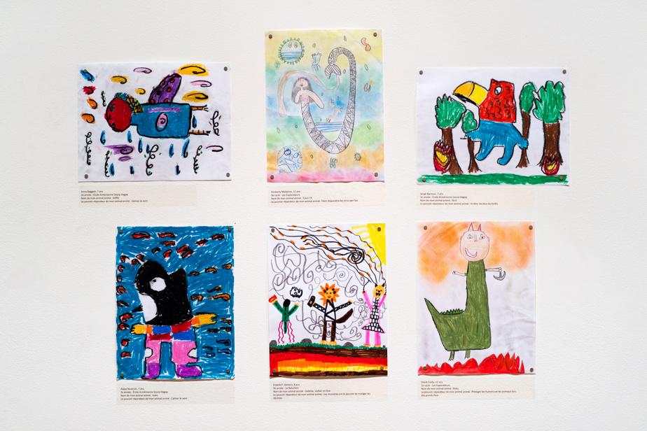 Quelques exemples de dessins exposés