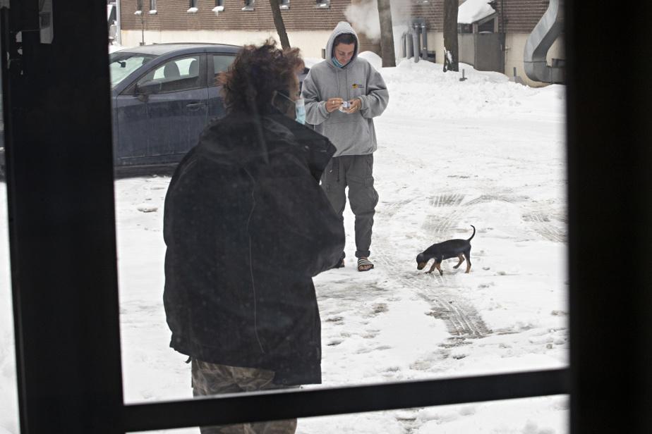 Raoul Fortier (en arrière-plan) revient d'un road trip au Costa Rica avec son chien nouvellement adopté, Ticca.