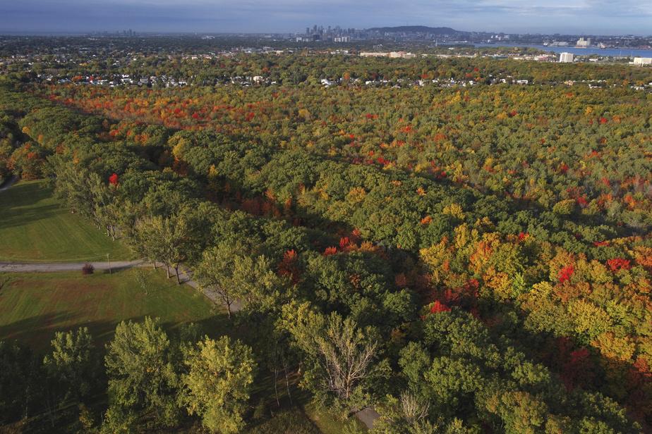 La vue aérienne du parc permet de bien apprécier les couleurs automnales et le centre-ville de Montréal, au loin.