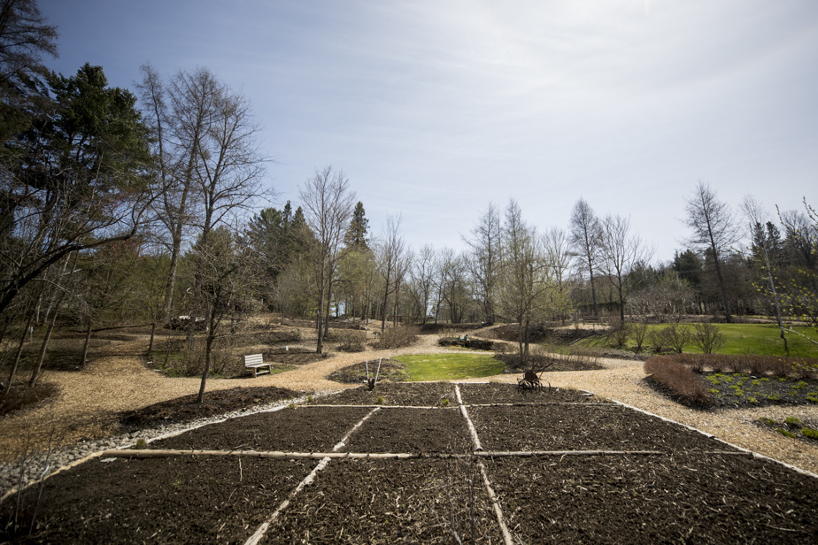 This section of the Jardin de François will be unrecognizable when the perennials start to grow again.
