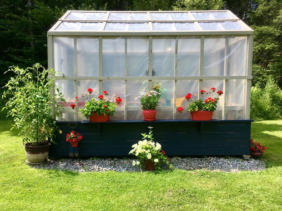 La serre construite par RéjeanRousseau est utilisée au printemps pour entreposer les plants de légumes et de fleurs avant la mise en terre. Les propriétaires adorent le pesto. Ils cultivent chaque année 25gros plants de basilic!