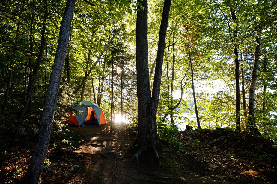 Au petit matin, à notre emplacement de camping, Henri le chien attend patiemment le réveil de fiston et de ma copine.