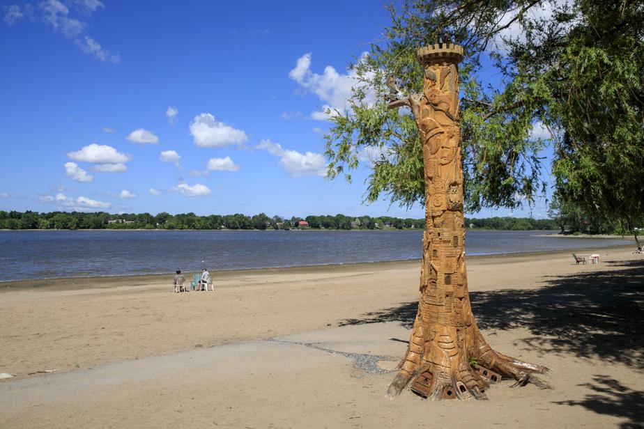 Un arbre sculpté par Richard Lamothe à la berge aux Quatre-Vents, dans Laval-Ouest