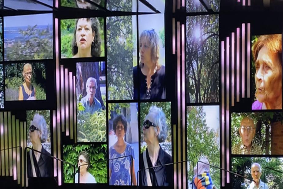 Quelques oiseaux, 2020, Milutin Gubash, vue de l'installation à la Place des Arts, œuvre constituée de 35vidéo de 3min tournant en boucle, vidéo HD, couleurs, son. Avec le soutien de la Place des Arts et du CALQ.