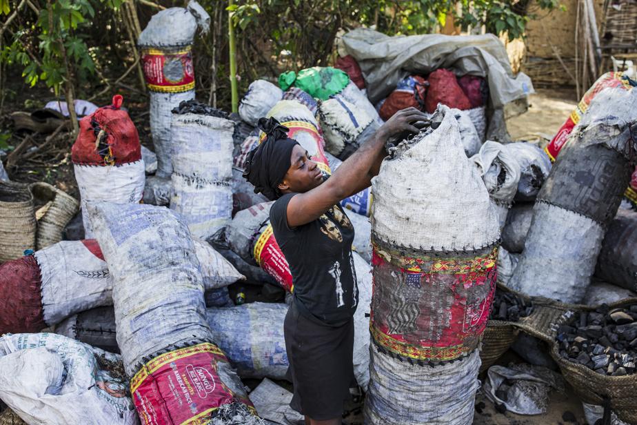 Une femme remplit des sacs de charbon au marché de Sainte-Suzanne. Le charbon est souvent surnommé «l'or noir» d'Haïti; il est une source de revenus importante pour de nombreux paysans. Contrairement aux récoltes, qui arrivent périodiquement, le charbon peut être produit et vendu n'importe quand.