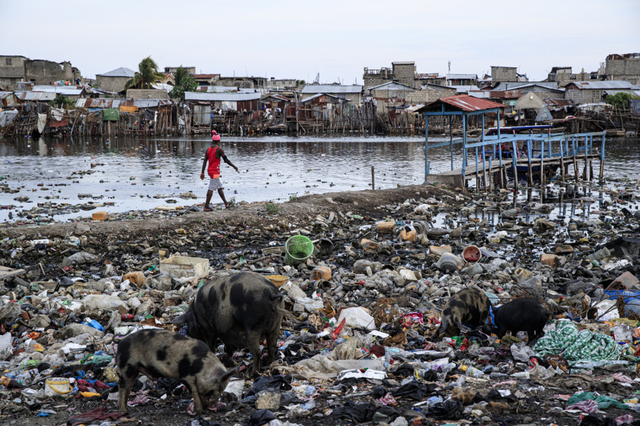 Un quai rudimentaire est aménagé sur la berge dans le bidonville de Barrière Bouteille, constituée d'un amoncellement de déchets. Il permet l'accostage d'une barque qui fait office de traversier entre ce quartier populaire et celui de Conassa, séparés par l'embouchure de la rivière du Haut-du-Cap, au pied de Cap-Haïtien, deuxième ville du pays.