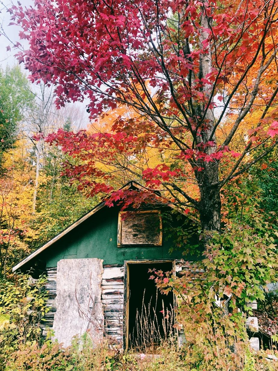 Vandalisée à quelques reprises, la cabane avait été condamnée dans la dernière décennie.