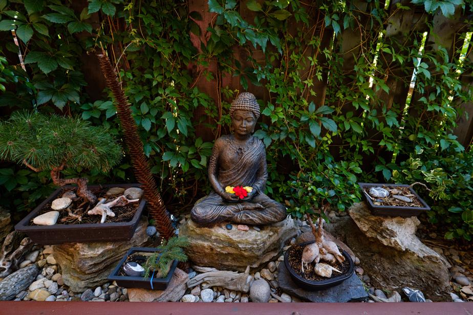 Une statue de Bouddha confectionnée à Rivière-Rouge, dans l'atelier des Ornements Jonathan, côtoie les bonsaïs façonnés par Yvan Martin. Des vignes poussent à l'arrière, contribuant à l'impression de calme, qui se dégage.