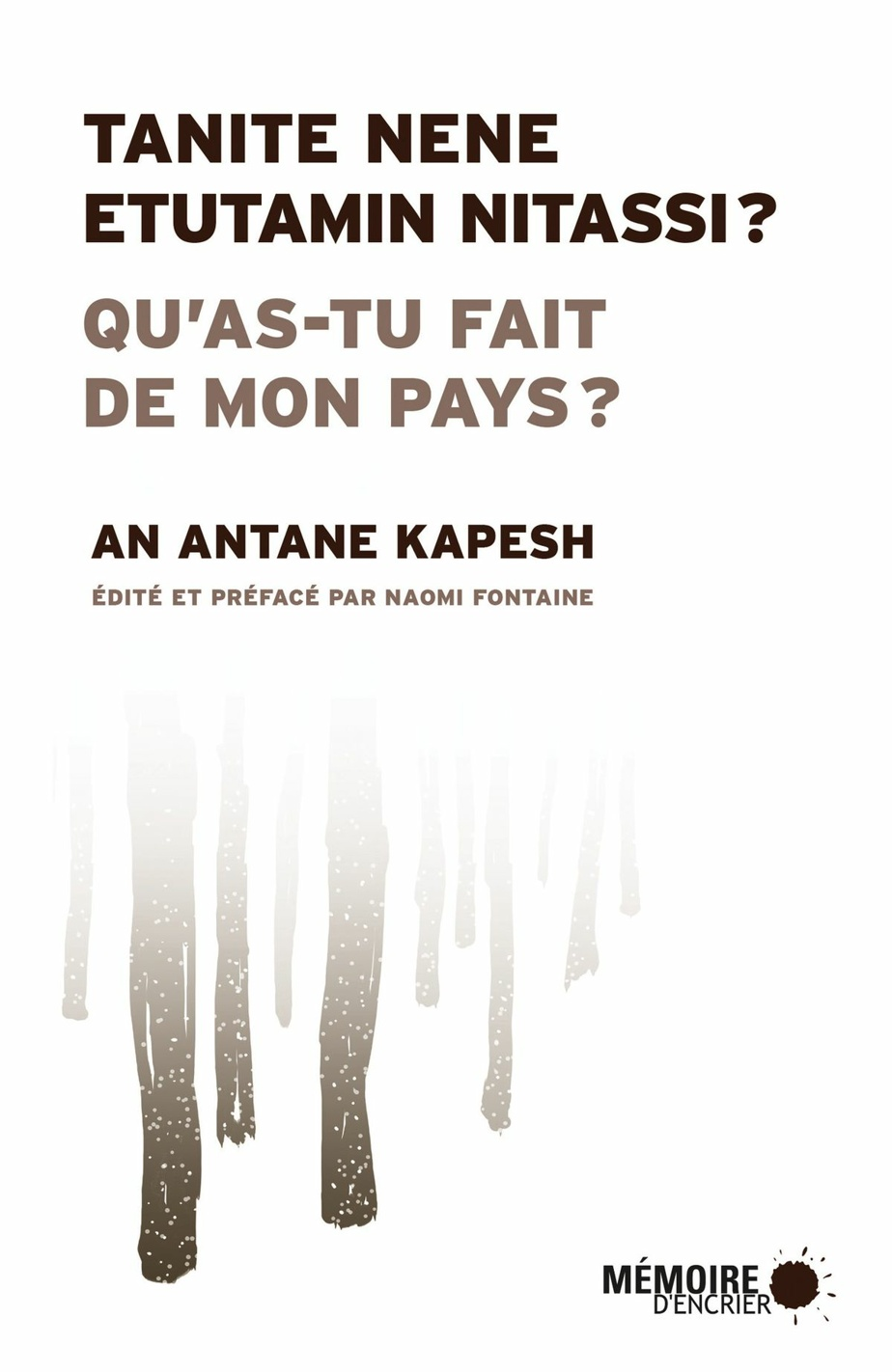 Tanite nene etutamin nitassi? / Qu'as-tu fait de mon pays?, d'An Antane Kapesh (Mémoire d'encrier)