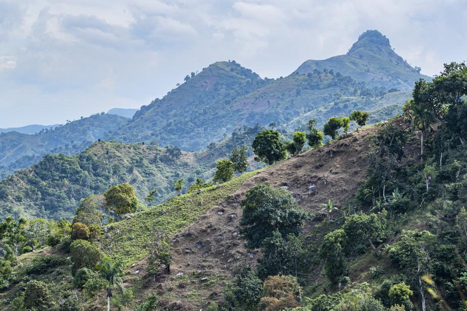 Elle engendre des problèmes d'érosion et de dégradation des sols, qui rendent le pays encore plus vulnérable aux aléas du climat.