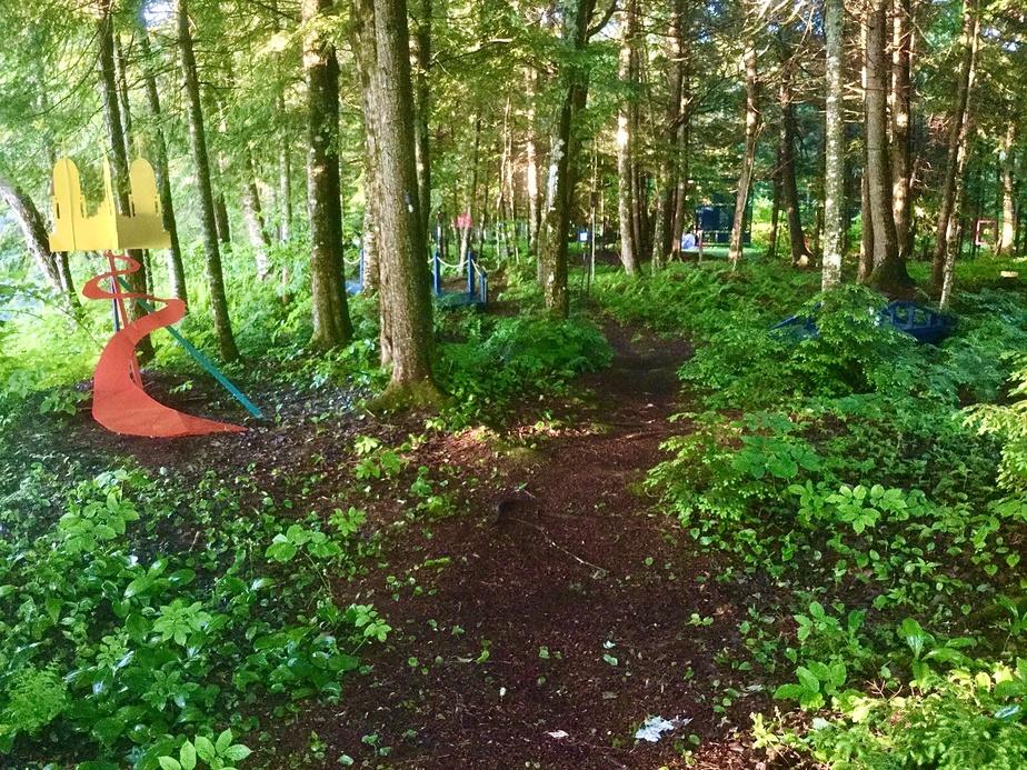 Le sentier du boisé mène à une zone où l'on peut se réunir autour d'un feu, l'été. On emprunte pour s'y rendre de petits ponts de bois enjambant des rus.
