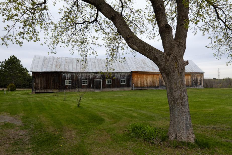 Restaurée, la grange bénéficie d'une grande superficie et peut aussi bien servir d'abri à des animaux que de salle coquette pour organiser de grandes fêtes. «C'est très joli à l'intérieur parce que c'est tout en bois de grange et qu'il y a un bel éclairage», indique Gabriela Sube Avalos.