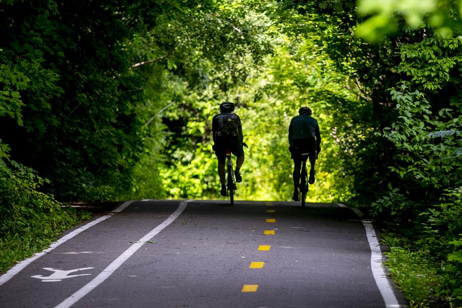 Dans la réserve naturelle du boisé Roger-Lemoine, la piste cyclable s'engouffre littéralement dans un écrin de verdure dense, une bouffée d'air frais par journée chaude.