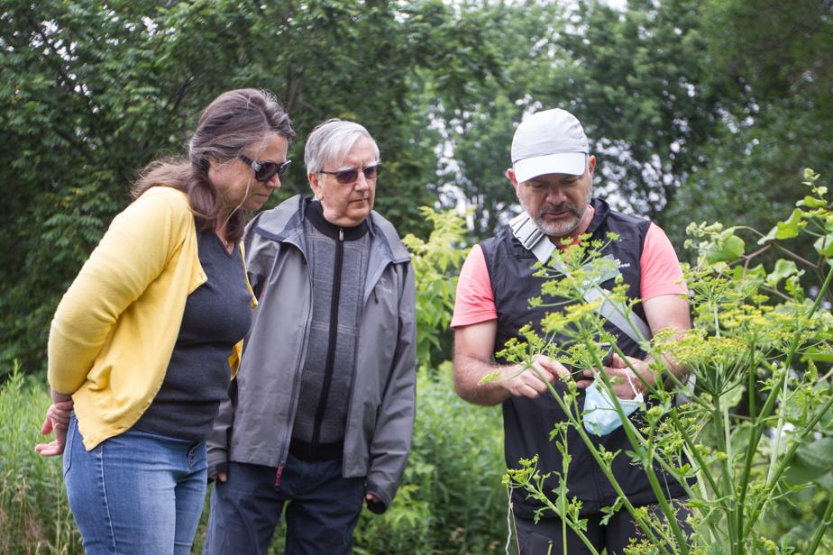 Dans le cadre d'une activité de La nature près de chez vous, l'animateur Roger Hajjar (à droite) montre ses découvertes à des visiteurs au parc de l'Honorable-George-O'Reilly, à Verdun.